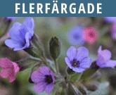 Flerfaergade